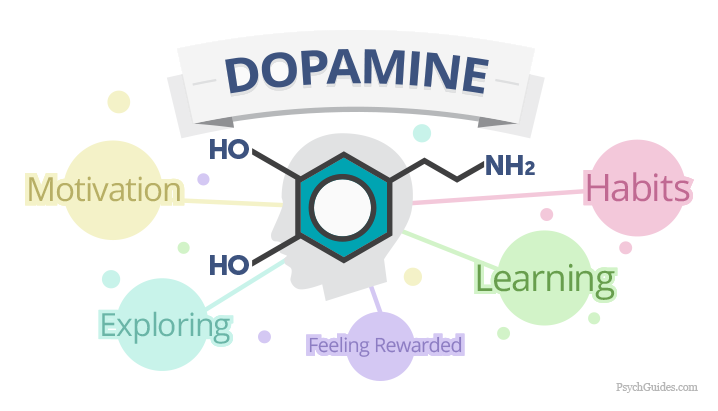 Dopamine, the Chemical of Addiction. Image credits: Psychguides